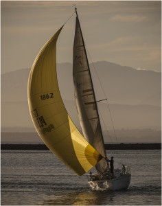 Yellow Sail